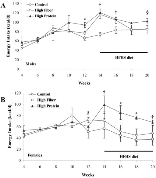 Energy intake of male and female rats that consumed a C, HF or HP diet from weaning until 14 wk of age and were then switched to a HFHS diet for 6 wk. Results are presented as mean ± SE, n = 5 per group. Panel A provides the energy intake in male rats measured daily for a week every two weeks throughout the study. Rats were switched from their weaning diet (C, HF or HP) to HFHS at 14 wk of age and consumed it until study completion at 20 wk of age. Panel B provides the energy intake in female rats measured for daily for a week every two weeks throughout the study. In Panel A, the * represents a difference (p < 0.05) between HP versus HF and C. The † represents a difference (p < 0.05) between HF versus HP and C. The § represents a difference (p < 0.05) between HP versus HF. In Panel B, the * represents a difference (p < 0.05) between HP versus HF and C. The † represents a difference (p < 0.05) between HF versus HP. The § represents a difference (p < 0.05) between HF versus C.
