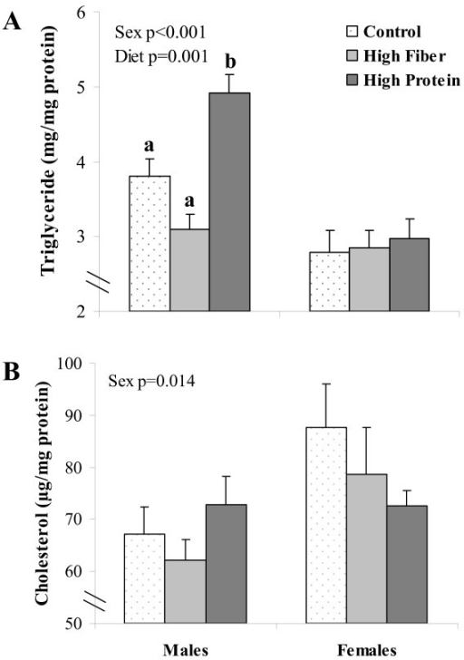 Hepatic triglyceride and cholesterol content in rats challenged with a high fat/sucrose diet following HP, HF or C diets. Results are presented as mean ± SE, n = 9-10 per group. Significant sex and diet effects are indicated in the graphs. Diet treatments with different letters within a gene represent a significant difference (p < 0.05).