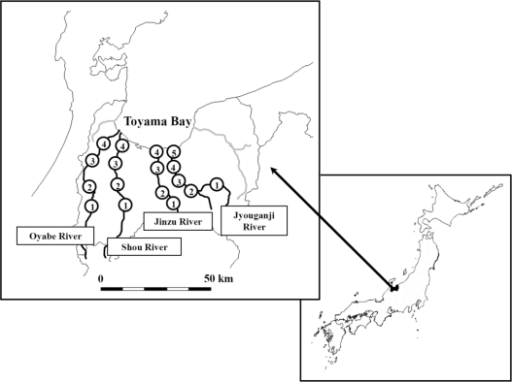 The location of Oyabe River, Shou River, Jinzu River, and Jyouganji River in Toyama, Japan and the sampling sites.