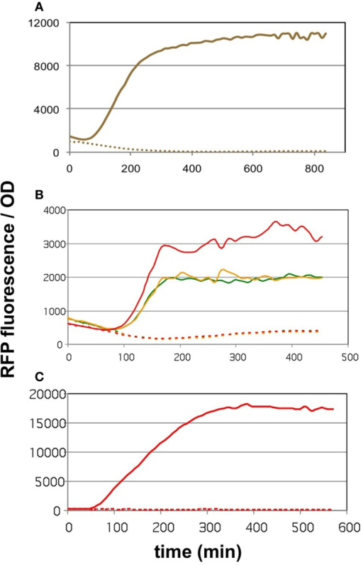 The effect of cerulenin on fluorescence generated by the sensor circuits. On all three graphs, the solid lines show the cultures challenged with cerulenin, while the segmented lines depict the corresponding untreated cultures. (A) DH5α cells harboring the pBFR1k_RFP_8FapR sensor plasmid in mineral salts medium. (B) DH5α cells harboring the pCFR sensor plasmid in LB medium. Three cultures were tested, originating from three colonies obtained after transformation of the pCFR ligate. (C) DH5α cells harboring the pCFR sensor plasmid from the best performer colony seen in (B), cultured in mineral salts medium.