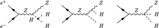 Generic Feynman diagrams contributing to Higgs pair production via Higgs-strahlung off Z bosons