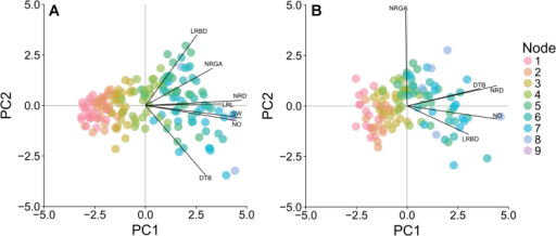Principal component analysis of root architectural phenes conducted on data averaged across the four replicates for each nitrogen level, maize genotype, and node position combination for SA (A) and the USA (B). Points represent the scores of principal components 1 and 2 (PC1 and PC2) for each nitrogen level, maize genotype, and node position combination. Labelled lines demonstrate the correlation of phene values to principal component scores (maximum correlation, 0.951, SA; 0.952, USA). Abbreviations are as given in Table 1.