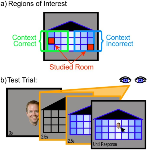 Design modifications used in Experiment 2.(a) General display information and resulting regions of interest. (b) Test phase design and timing information. Orange boxes indicate screens for which eye-tracking data was collected.
