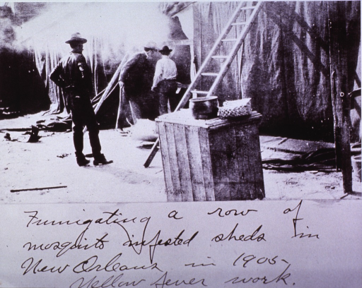 <p>The U.S. Public Health and Marine Hospital Service fumigating a row of mosquito-infested sheds in New Orleans in 1905 as part of the yellow fever campaign.</p>