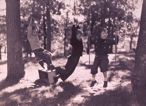 <p>Three children playing on swings attached to trees.</p>