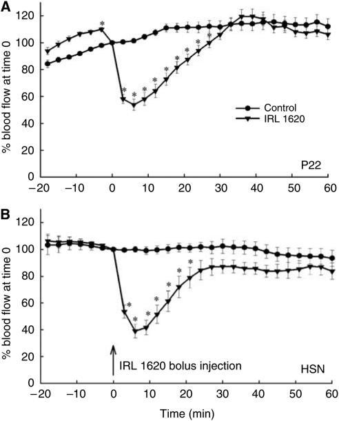 Time course of relative RBC flux changes after i.v. treatment with IRL 1620 (3 nmol kg−1) (100% is the value in control tumours at the time of IRL 1620 injection) in P22 (A) and HSN (B) tumours. Each point represents arithmetic mean±s.e. for six animals. A significant difference from control is represented by (*).