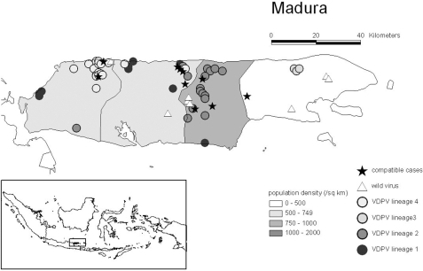 (adapted from Fig 1; Estivariz et al. 2008 JID 197: 347–354) Geographic distribution of virologically-confirmed and polio-compatible type 1 cVDPV cases on Madura, Indonesia between June and October 2005.Population density in Madura for 2005 is shown by district