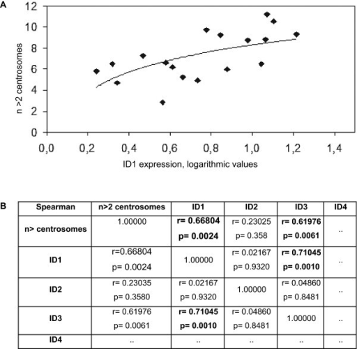 Statistical data evaluation. A) Logarithmic ID1 expression data compared with number of centrosomal abnormalities; B) Spearman's rank correlation coefficient r looking at ID expression and centrosome abnormalities: r values above, p values below; r = 1 shows perfect correlation, r = 0 shows no correlation, 1> r > 0 shows positive correlation, in this case e.g. ID1 and centrosomal abnormalities.