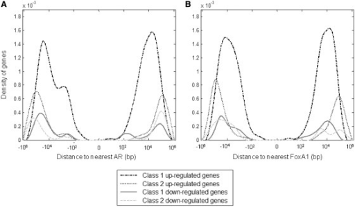 Genes in Class 1 are closer to a transcription factor AR and to FoxA1 binding sites compared to genes in Class 2. The same patterns are observed in both up- and down-regulated genes, although this distance preferential are more obvious for over-expressed genes.