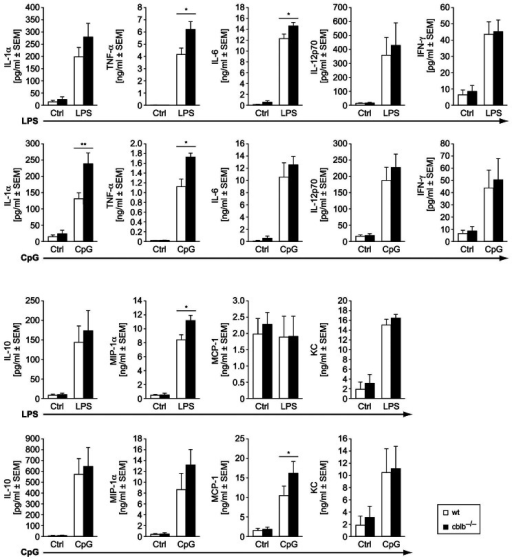 Cytokine and chemokine production by wildtype versus cblb−/− BMDs after stimulation with different TLR agonists.Wildtype and cblb−/− BMDCs were stimulated on day seven of culture with 1 µg/mL LPS or 100 nM CpG overnight for, IL-12p70, IL-10, IL-1α, IL-6, TNF-α, IFN-γ, KC, MIP-1α and MCP-1 measurement from cell culture supernatants were performed using Bioplex-Technology. Data represent mean value ± SEM of at least 4 independent experiments, *p<0.05 wildtype BMDCs versus cblb−/− BMDCs.