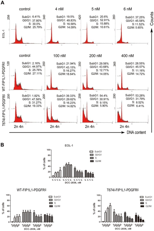 DCC-2036 increases sub-G1 population in FIP1L1-PDGFRα-positive cells.EOL-1 cells and BaF3 cells expressing WT or T674I FIP1L1-PDGFRα were treated with indicated concentrations of DCC-2036 (24 hours for EOL-1 cells, 36 hours for BaF3 cells); then cells were collected, washed, stained with propidium iodide and analyzed with flow cytometry. A) Representative graphs of three independent experiments; B) Statistical charts. Columns, mean; error bars, SD.
