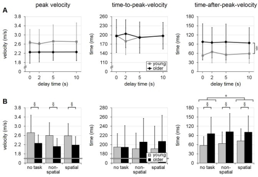 Hand-velocity variables.Effects of recall-delay and cognitive-task on hand velocity (peak resultant velocity in the transverse plane, time-to-peak-velocity and time-after-peak-velocity) are shown in (A) and (B), respectively. Means and standard deviations are shown for young adults (gray) and older adults (black). Note that older adults tended to achieve lower peak velocity, as well as spending significantly longer time on deceleration (i.e. larger time-after-peak-velocity). § indicates a significant difference due to age (main effect); * indicates a significant difference due to cognitive-task in (B) (α=0.05); whiskers indicate standard deviations.