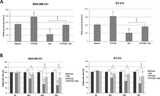FTY720 impairs cell viability through PP2A activation(A) Treatment with OA inhibits the FTY720-induced PP2A activity in MDA-MB-231 and BT-474 cells. (B) The impaired cell growth induced by FTY720 is restored by the treatment with OA.
