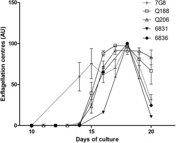 Exflagellation levels over days of gametocyte culture (arbitrary unit). For each independent culture, exflagellation centres values are normalized to the highest value of the culture (data are presented in Additional file 1). The mean and SEM of three cultures is shown for 7G8 and the two French Guiana strains (Q188 and Q206) while a single culture for each Cambodian isolate is represented (6831 and 6836)