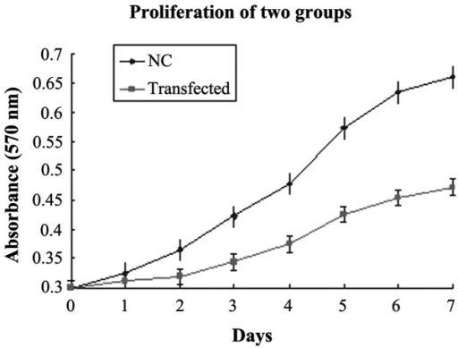 Analysis of proliferation of cells in different groups using an MTT assay. Absorbance in yes-associated protein interference stable clones and NC group cells were counted for 7 days. Growth curves were plotted to assess the growth pattern of each cell line Data are expressed as the mean ± standard deviation. (P=0.022). NC, negative control.