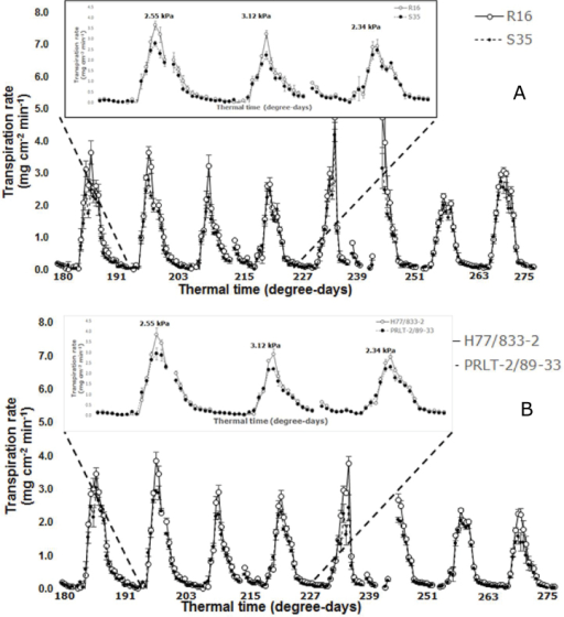 Transpiration rate profile (in mg cm-2 min-1) as a function of thermal time (degree-days, with base temperature of 10ºC and optimal temperature of 25–35ºC) in (A) two genotypes of sorghum (VPD-insensitive R16 and VPD-sensitive S35), and (B) in two genotypes of pearl millet (VPD-insensitive H77/833-2 and VPD-sensitive PRLT-2/89-33). The insert in each figure represents a close-up of a 3 d period at 191–227 degree-days. Each data point is the mean (±SE) of six replicated sectors for each genotype.