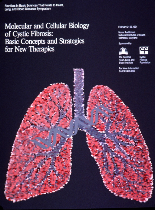 <p>Predominantly gray poster with white lettering announcing a symposium held Feb. 1991.  Symposium name in upper left corner.  Title below name.  Dates, location, and sponsor information on right side of poster.  Visual image is an illustration of a pair of lungs with a double helix superimposed across them.</p>