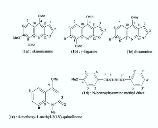 Chemical structure of alkaloids from Zanthoxylum tsihanimposa stem bark