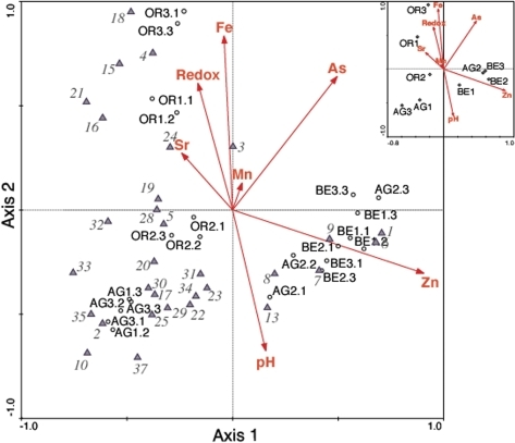 CCA biplot of the SARST-V6 dataset with relevant environmental variables at Río Tinto samples and sites.Superimposed canonical correspondence analysis (CCA) biplots of RT samples and SARST-V6 OTUs at the 99% similarity cut-off value displaying 68% of the variance of the OTUs with respect to the environmental variables. The inset represents the CCA biplot when pooling samples by site. The canonical eigenvalues for axes 1–4 of the sample analysis are 0.367, 0.272, 0.112, and 0.062 respectively. Environmental variables are indicated by arrows that point in the direction of increasing values of each variable. The coordinates of the arrowheads indicate the degree of correlation with the axes. Samples and sites are represented by black circles. For sample names see Materials and Methods. OTUs with total abundances higher than 10 RSTs are represented by grey triangles. To avoid overcrowding of points only one OTU per strain is plotted. The relative frequency of OTUs in samples can be determined using the biplot rule. To do this, drop a perpendicular from each sample onto a line through the OTU and the origin. Samples projecting on the line in the direction towards the OTU and beyond it are predicted to have a higher relative frequency of that OTU than samples projecting onto the line in the opposite direction. Interpretation of environmental arrows with respect to sites, OTUs and other environmental variables follows the same rule. OTU numbers correspond to: (1, 12, 14, 36) = Acidithiobacillus sp. SS5; (2, 11) = Uncultured bacterial clone MPKCSC9; (3) = Acidithiobacillus sp. SK5; (4) = Leptospirillum ferrooxidans P3a; (5, 26) = L. ferrooxidans Parys; (6) = Acidithiobacillus sp. B9; (7) = L. ferrooxidans Sy; (8) = Thermicanus aegyptius; (9) = Acidiphilium sp. Pk46; (10) = Eubacterium clones TRA5-3 and MeBr10; (13) = Uncultured bacterium BA18; (15) = F. acidiphilium; (16) = Bacterium clone 015C-C11; (17) = Actinomycetales clone TM167; (18) = Leptospirillum sp. strain DSM 2391; (19) = Thermicanus aegyptius; (20) = Bacterium Ellin5017; (21) = Pseudomonas sp. B35; (22) = Nostoc sp. PCC 9231; (23) = Acidiphilium sp. CCP3; (24) = Uncultured bacterium clone RCP2-12; (25) = Uncultured actinobacterium clone BPM2_A01; (27) = Acidithiobacillus sp. SK5; (28) = Acidobacteria clone BPC3_E10; (29) = Uncultured bacterium clone 300A-B12; (30) = Bacterium Ellin5114; (31) = Corynebacterium sp. S18-03; (32) = Uncultured bacterium clone RCP1-34; (33) = Uncultured bacterium clone RH1-L2; (34) = Uncultured bacterium clone RH1-i3; (35) = Uncultured bacterium clone RCP2-16; (37) = Uncultured actinobacterium clone BPM3_G08.