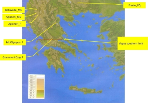 Map showing the sampled sites in Greece. The southern limit of F. sylvatica is also shown.