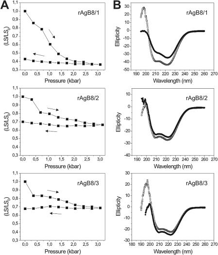 Pressure-induced dissociation of AgB recombinant oligomers and its effects on protein secondary structure.High hydrostatic pressure-treatment (A) and circular dichroism spectra (B) of the recombinant AgB oligomers. Protein samples (0.2 mg/ml in 25 mM tris buffer pH 7.5) were submitted to compression (→) and decompression (←) at 25°C, and light scattering was monitored at the steady state [LS was recorded and divided by the initial value (LS/LS0)]. Circular dichroism spectra were recorded before (open symbols) and immediately after (solid symbols) pressure treatment.