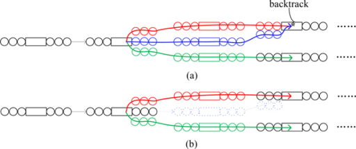 Breadth-first search bubble removal in the sparse k-mer graph. Removing unwanted structures in the sparse de Bruijn graph. (a) Before removal. (b) After removal.