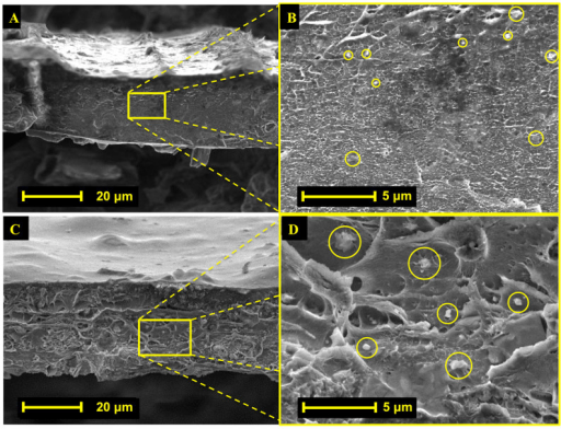 Cross sectional SEM images of PIM-1 Ti5UiO-66 membranes 2.6 wt.% (A, B) and 15 wt.% (C, D), respectively.Highlighted regions of (A, C) are shown at higher magnification to identify MOF locations in images (B, D), respectively.
