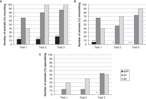 The percentage number of sNP (n = 15) and sP (n = 15) rats mounting (A), intromitting (B), and achieving ejaculation (C) over the three copulatory behavior tests. Due to the low number of sNP rats engaging in copulatory activity also in the third test, they were excluded from further detailed statistical analyses of copulatory behavior. Wistar (n = 10) rats were included as a reference strain. **p < 0.01, *** p < 0.001, **** p < 0.0001 compared to sP rats (chi-square test).
