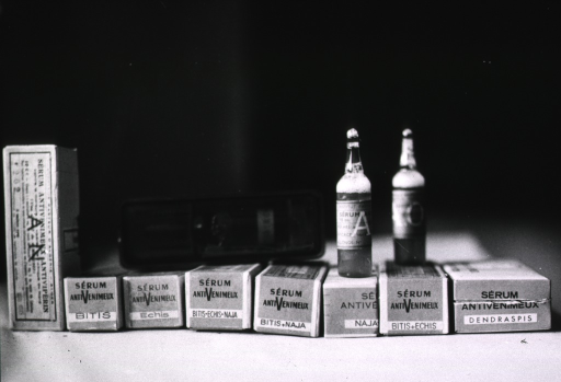 <p>Vials of antivenin serum for a variety of snakebites.</p>
