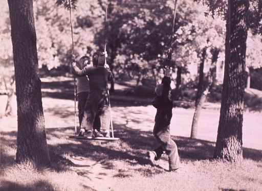 <p>Three children playing in swings attached to trees.</p>