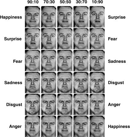 Ekmen And Friesan Facial Emotion Recognition Test