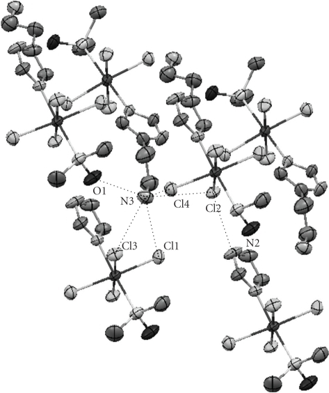 The hydrogen bonds in the crystal structure of compound 1b. The ammonioethyl groups of the lower two asymmetric units are omitted for clarity.