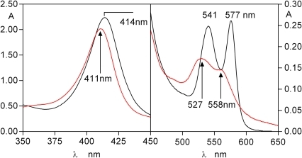 Spectrum showing the ferrihaem-HmuY complex (red line) formed after 24 h co-incubation of oxyhaemoglobin with HRgpA and HmuY.The oxyhaemoglobin and HmuY concentrations were both 16 µM, whilst HRgpA was at 0.4 µM.