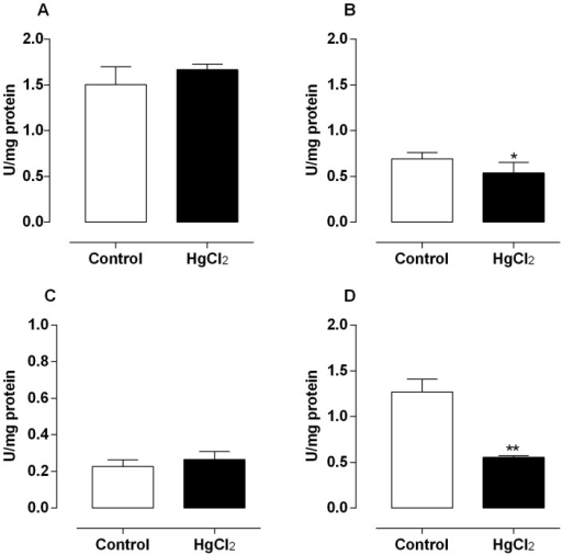 Effect of treatment for 60 days at low concentrations of HgCl2 on catalase activity.Values of catalase activity on testis (A), epididymis (B), prostate (C) and vas deferens (D). Data are expressed as mean ± SEM (n = 6). ** p<0.01, *p<0.05 (Student's t-test).