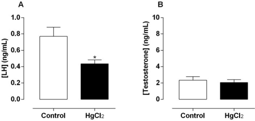 Effect of treatment for 60 days at low concentrations of HgCl2 on serum hormonal levels.(A) Luteinizing hormone (LH) and testosterone levels (B). Data are expressed as mean ± SEM (n = 10). *p<0.05 (Student's t-test).