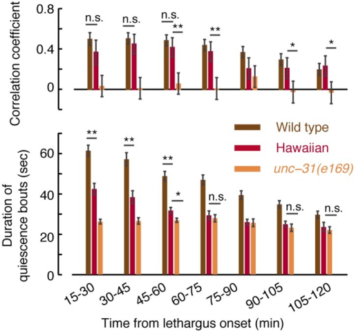 Micro-homeostasis in undisturbed Hawaiian wild-isolates.The durations of bouts of quiescence, as well as pairwise correlations, were measured for Hawaiian animals and unc-31 mutants as a function of time during L4 lethargus. The detailed comparison reveals that the duration of bouts cannot in and of themselves account for the strength of the pairwise correlations (see Figure 7A for details).DOI:http://dx.doi.org/10.7554/eLife.04380.014