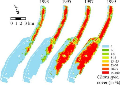 Travelling wave-type of spread of aquatic vegetation (Chara spec).Lake Veluwe, the Netherlands, from 1993 to 1999 (from: Monitoring of aquatic vegetation of the IJsselmeer Area by Rijkswaterstaat, an Agency of the Ministry of Infrastructure and the Environment, The Netherlands).