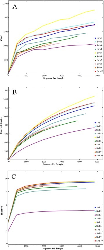 Alpha diversity of the sequence reads from soil samples collected along elevational gradients from southwestern highland of Saudi Arabia. (A) Chao1 index, (B) rarefaction analysis of the observed species and (C) The Shannon index were computed.