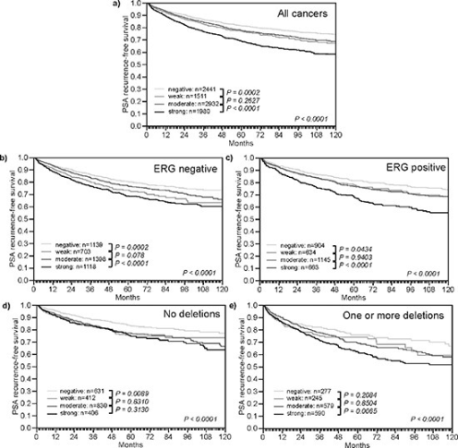 Impact of different levels of TYMS expression on PSA recurrence free survival in molecularly defined subsets of prostate cancer(a) All cancers. (b) Subset of ERG-fusion negative cancers. (c) Subset of ERG-fusion positive prostate cancers. (d) Subset of cancers without deletions of 3p13, 5q21, and 6q15. (e) Subset of cancers harboring one or more of these deletions.
