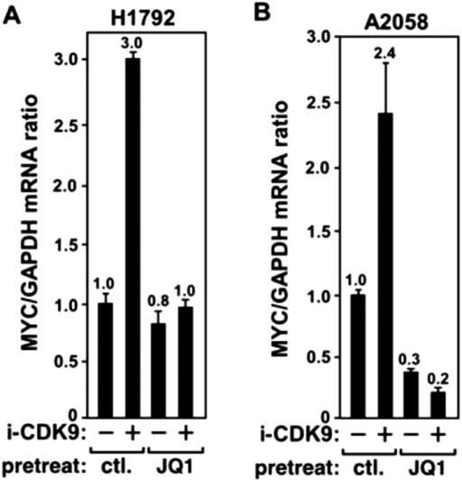 JQ1 blocks the i-CDK9-induced MYC expression in H1792 and A2058 cells.DOI:http://dx.doi.org/10.7554/eLife.06535.013
