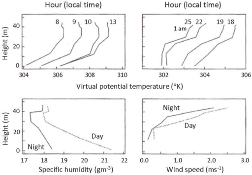 Mean values of rain forest meteorological conditions. Mean profiles of virtual potential temperature, θv (°K) (top panels), specific humidity, q (gm−3) (night is solid, day is dotted) (lower left-hand side), and wind speed, U (ms−1) (night is solid, day is dotted) (lower right-hand side) within a 45 m high rainforest. The θv profiles are identified by the hour of day over which they were averaged (12 = 1200; 25 = 0100, local time) [1].