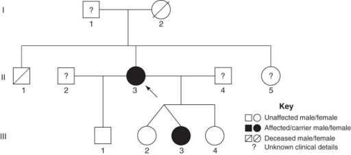 Pedigree of the RYR2 exon 3 deletion carriers. The proband (II-3) is indicated by the black arrow. Family members carrying the RYR2 exon 3 deletion are indicated in solid black. The members with unknown clinical and genetic background information are indicated by ?.