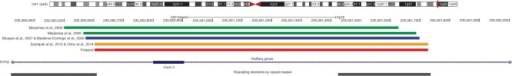 Reported deletions in the RYR2 gene. Ideogram of chromosome 1 showing the location of reported RYR2 gene deletions encompassing exon 3 (shown in green, blue, and yellow bars). The location of the proband's exon 3 deletion is shown in red, and the location and extent of Alu family repetitive sequences are shown at the bottom of the figure. These graphics were redrawn from the UCSC genome browser by accessing the NCBI36/hg18 assembly (http://genome.uscs.edu/).