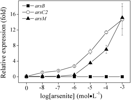 Effects of As (III) concentrations on the expressions of ars1, ars2 and ars3 operons in R. palustris CGA009. The expressions of arsB(■), arsC2(○), and arsM(▴) represent the expression of ars1, ars2, and ars3 operons, respectively. The expression of genes was calculated by determing the content ratio of functional genes to house-keeping gene (gyrB). Cultures were harvested in the middle-log phase (50 h). Error bars indicate the standard deviation from three independent experiments.