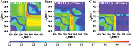 The map for coefficient of determination (R2) between the MDATT indices and the leaf chlorophyll content for both surfaces of both species. (A) λ3=719nm, (B) λ3=750nm, (C) λ3=850nm.