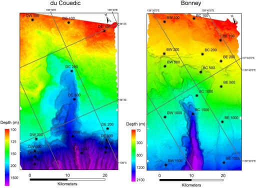 Multibeam acoustic images of the du Couedic and Bonney Canyon regions showing sampling stations coded by region (du Couedic or Bonney), transect (West, Centre or East) and depth (100, 200, 500, 1000 or 1500 m).The West and East stations are outside the canyons while the Centre stations run through the canyon axes. Note different scales of view. Macrofauna were collected at all but DW 1500, DE 1000 and DE 1500.