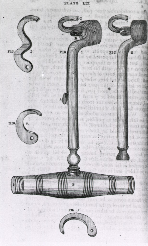 <p>A tool, with the various elements displayed, used for the removal of teeth.</p>