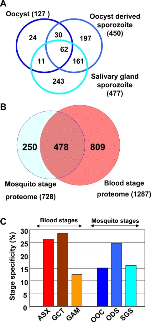 Distribution of identified P. falciparum proteins over different life-cycle stages.(A) Venn diagram depicting the distribution of detected P. falciparum proteins over three different mosquito life-cycle stages (oocysts, oocyst-derived sporozoites and salivary gland sporozoites). Numbers represent the number of proteins, that are either shared between 2 or 3 stages (overlapping areas) or that are detected in a single stage. (B) Comparison of the expression of P. falciparum proteins detected in the three mosquito stage proteomes to the blood stage proteomes described previously [15]. (C) The percentage of proteins exclusively detected in only one proteome out of 6 different life cycle stage proteomes, i.e. ASX - asexual blood stages; GCT – gametocytes; GAM – gametes; OOC – oocysts; ODS - oocyst-derived sporozoites; SGS - salivary gland sporozoites.