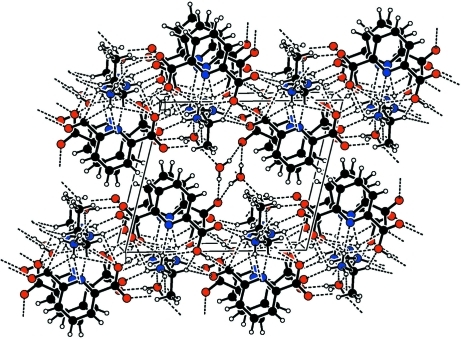The crystal packing of the title compound with hydrogen bonds shown as dashed lines as viewed approximately down a.