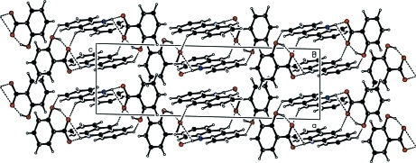 Molecular packing of the title compound with hydrogen bonding shown as dashed lines.